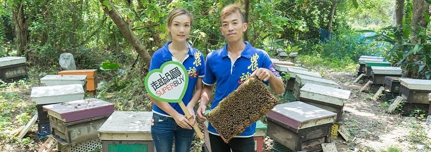 逾15年『蜂』工偉業 | 蜜妃蜂蜜 小農影片