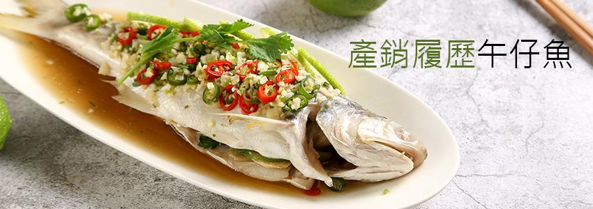 台潮魚集|用技術和鑽石水養出美味好品質,肉質鮮嫩魚刺不多